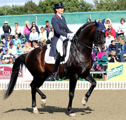 Charlotte Jorst Rides Kastels Nintendo to Personal Best Score to Win Thermal World Cup Grand Prix Freestyle