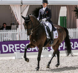 Great Britain's Emma Hindle & Romy Del Sol Win Munich Indoor CDI4* Grand Prix Special